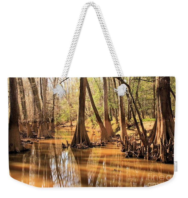 Congaree National Park Weekender Tote Bag featuring the photograph Cypress In The Swamp by Adam Jewell