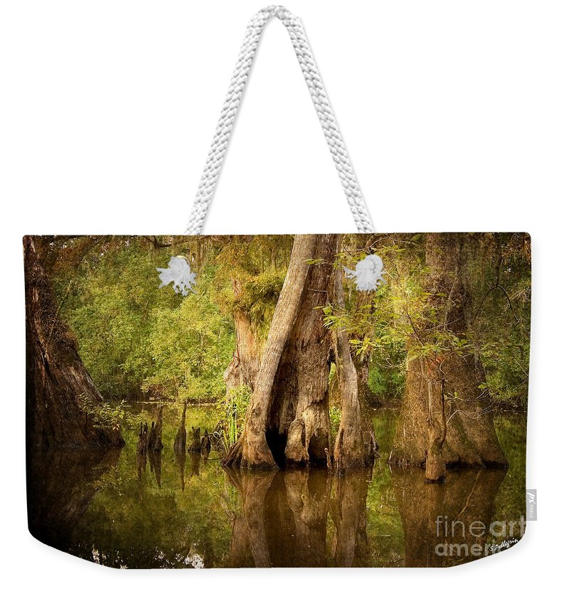 Water Weekender Tote Bag featuring the photograph Cypress by Scott Pellegrin