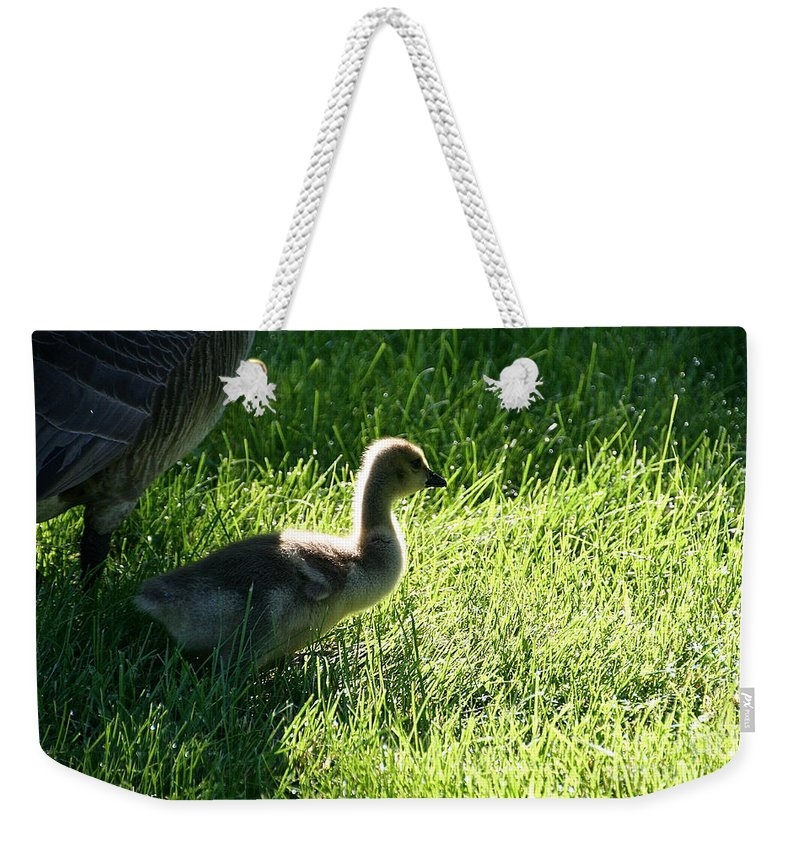 Outdoors Weekender Tote Bag featuring the photograph Dad's Lil Shadow by Susan Herber