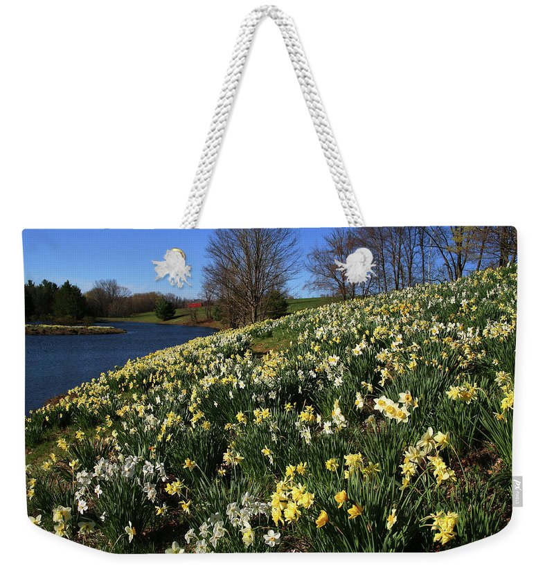 Daffodil Weekender Tote Bag featuring the photograph Daffodil Hill by Karol Livote
