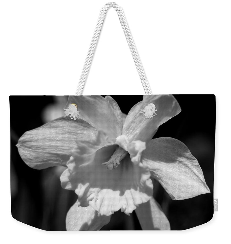Daffodil Close Up Weekender Tote Bag featuring the photograph Daffodil In Black And White by Kitrina Arbuckle