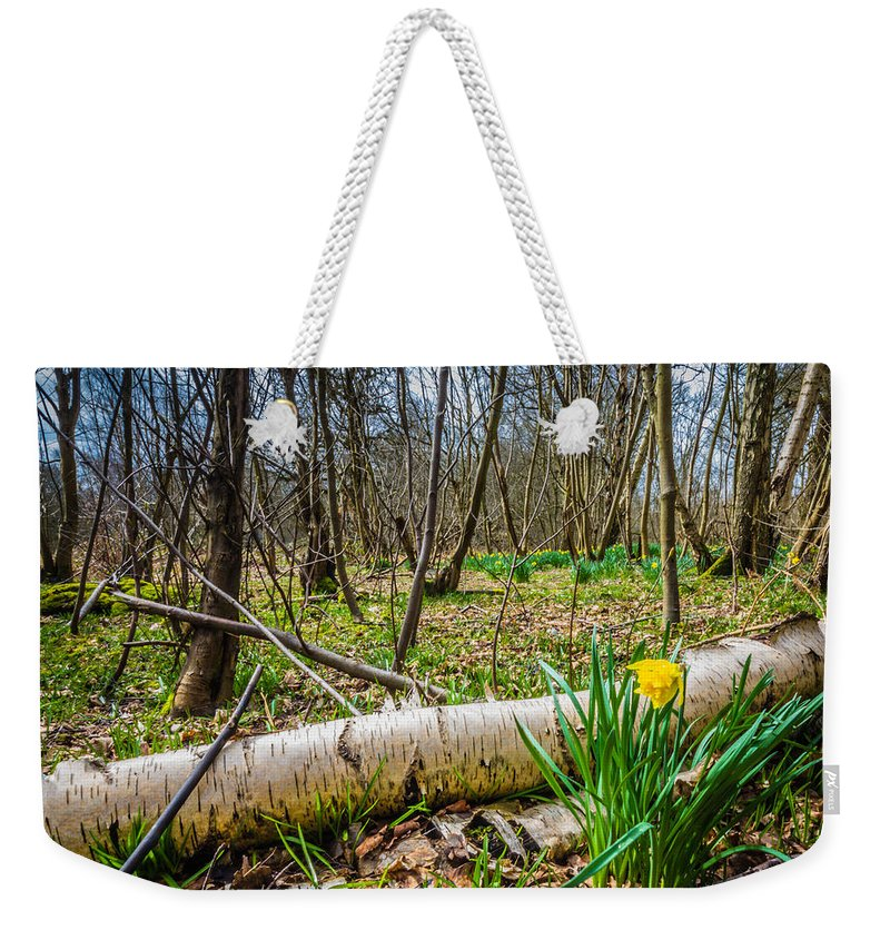 Dawn Oconnor Weekender Tote Bag featuring the photograph Daffodils And Birch by Dawn OConnor