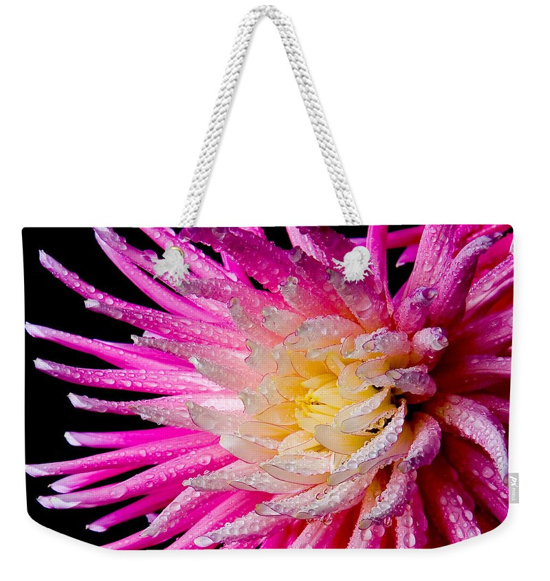 Plant Weekender Tote Bag featuring the photograph Dahlia Burst by Mary Jo Allen