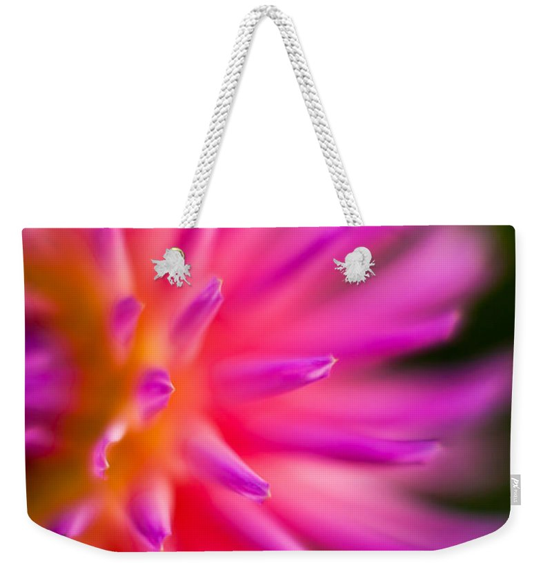 Dahlia Weekender Tote Bag featuring the photograph Dahlia Burst by Mike Reid