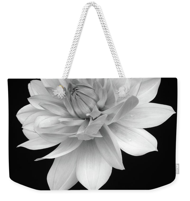 Haslemere Weekender Tote Bag featuring the photograph Dahlia In Gentle Shades Of Grey by Rosemary Calvert