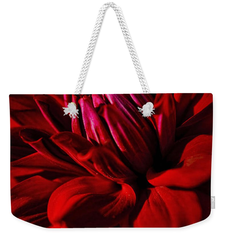 Dahlia Red Weekender Tote Bag featuring the photograph Dahlia Red by Wes and Dotty Weber