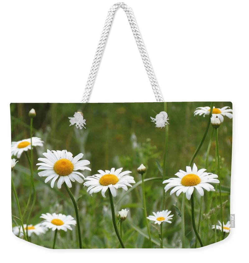Daisies Weekender Tote Bag featuring the photograph Daisies by MTBobbins Photography