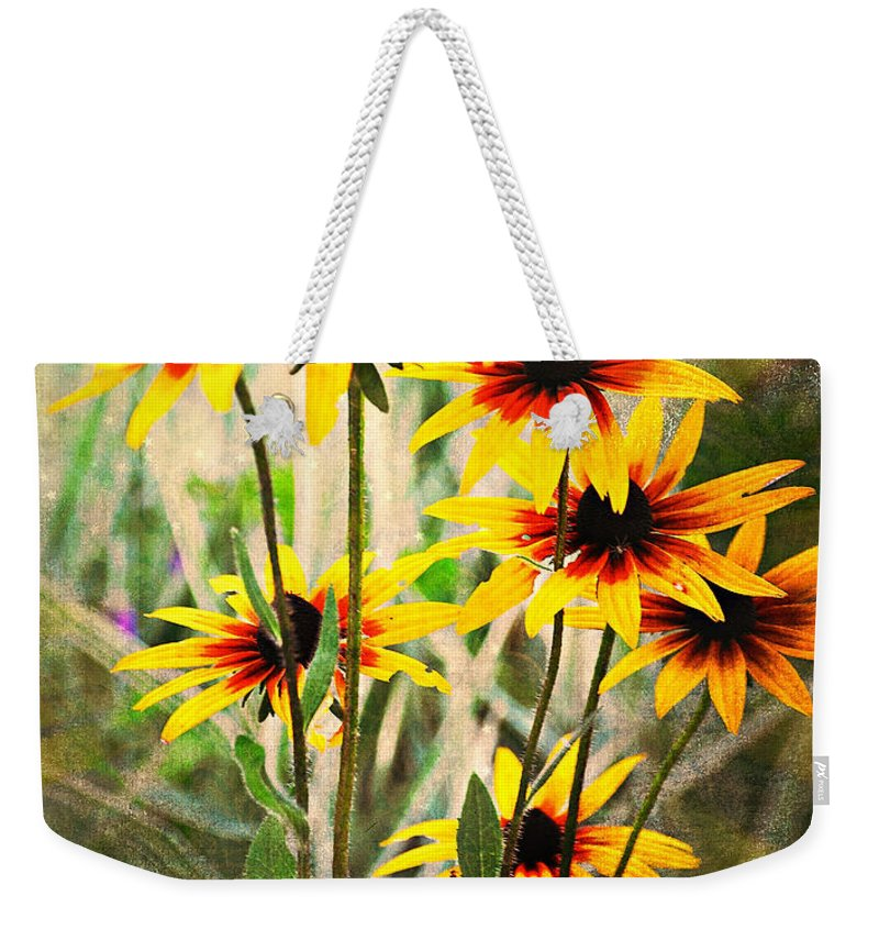 Flowers Weekender Tote Bag featuring the photograph Daisy Do by Marty Koch