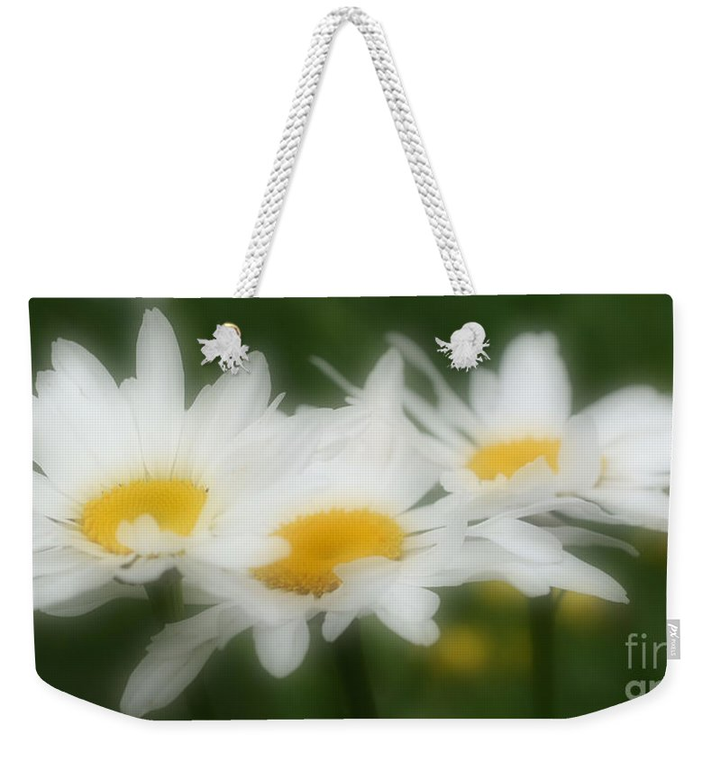 Daisies Weekender Tote Bag featuring the photograph Daisy Flower Trio by Smilin Eyes Treasures