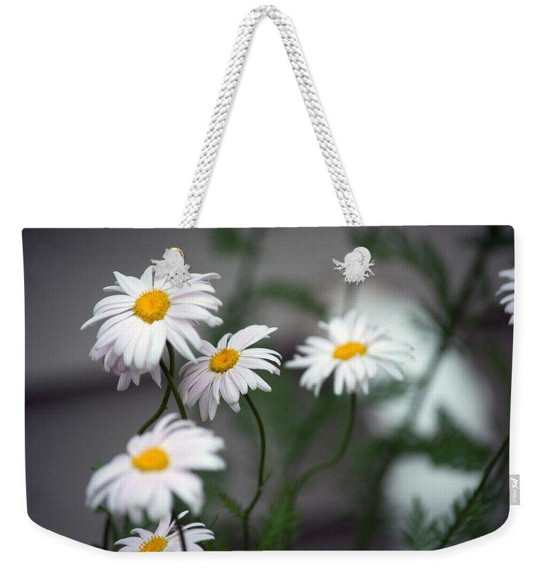 Daisy Weekender Tote Bag featuring the photograph Daisy by Linda Kerkau
