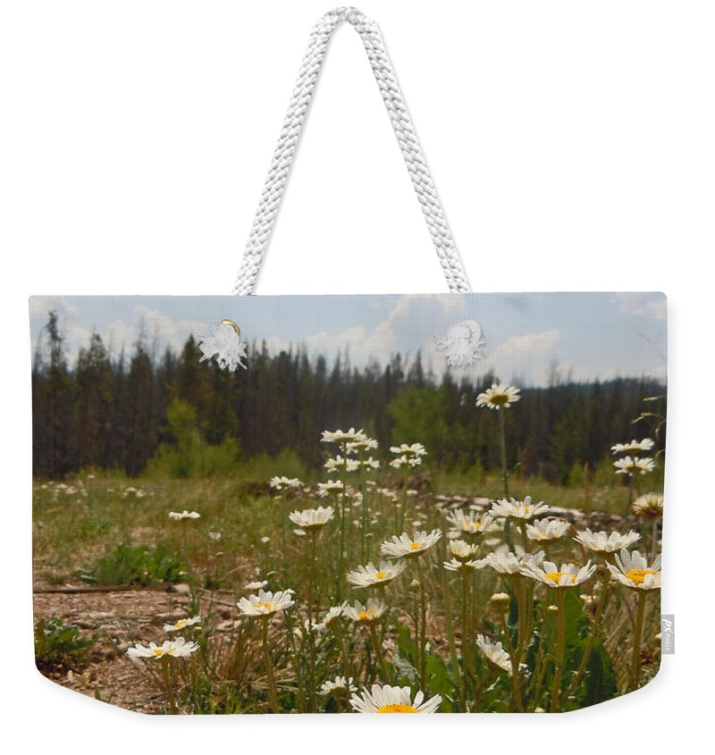 Daisy Weekender Tote Bag featuring the photograph Daisy Patch by Heather Coen