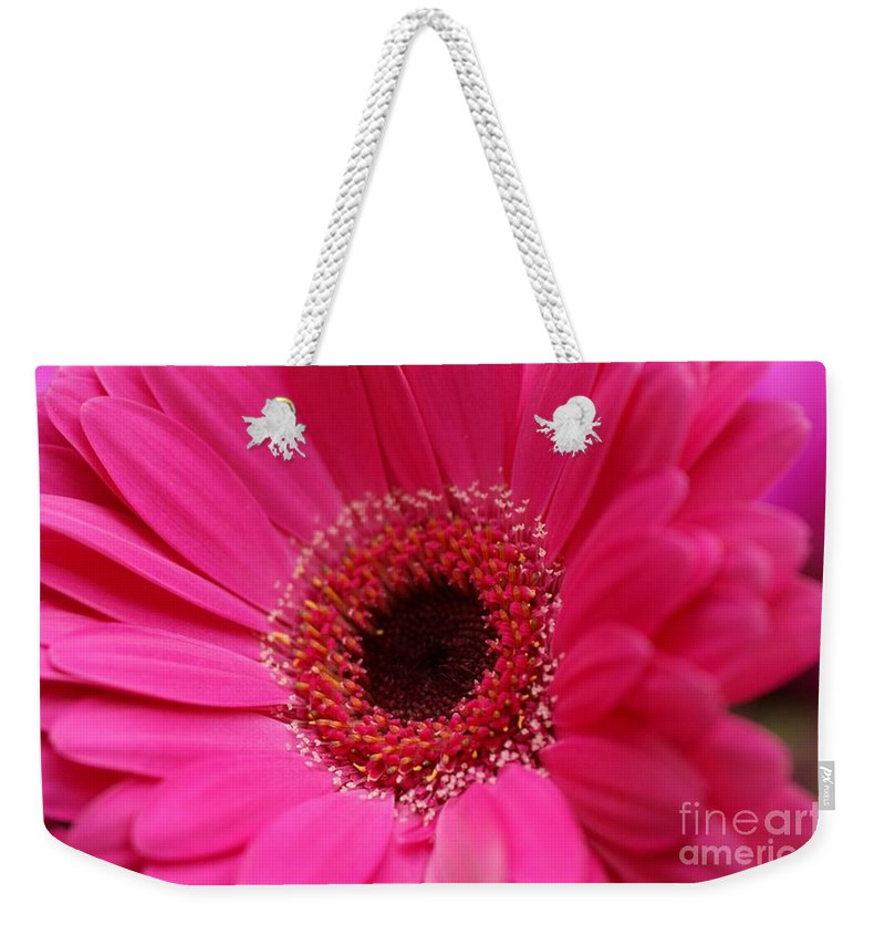 Pink Weekender Tote Bag featuring the photograph Daisy Pink by Carol Lynch