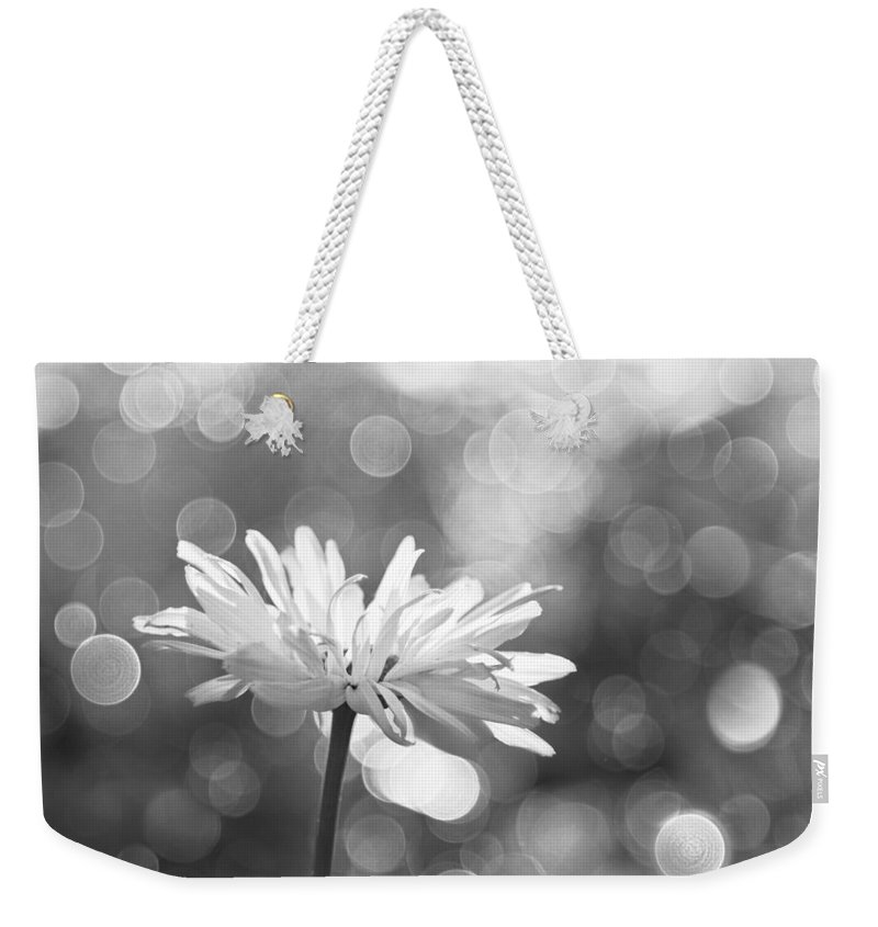 Rain Weekender Tote Bag featuring the photograph Daisy Rain by Theresa Tahara