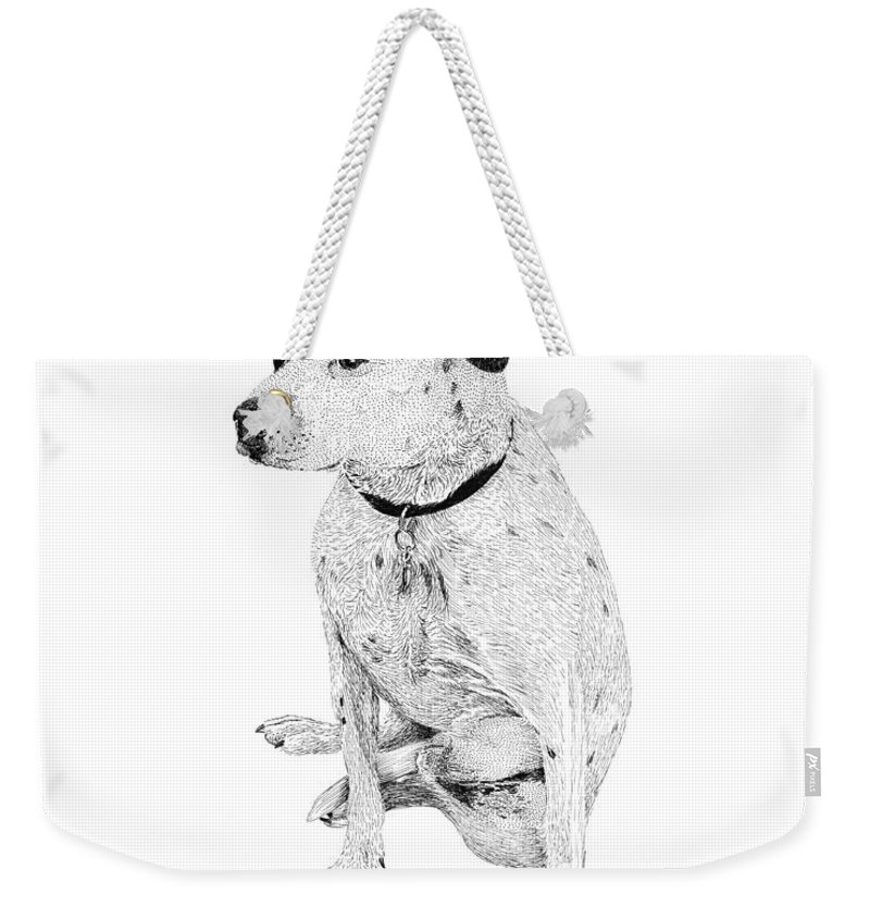 Dalmatian Mix Dog Breed Weekender Tote Bag featuring the drawing Dalmatian On Guard by Jack Pumphrey