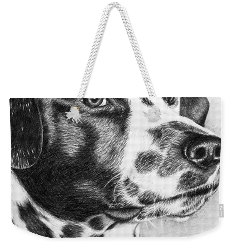 Dog Weekender Tote Bag featuring the drawing Dalmatian Portrait by Nicole Zeug