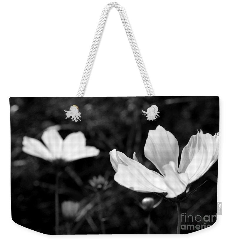 Weekender Tote Bag featuring the photograph Dancing In Moonlight by Kara Duffus