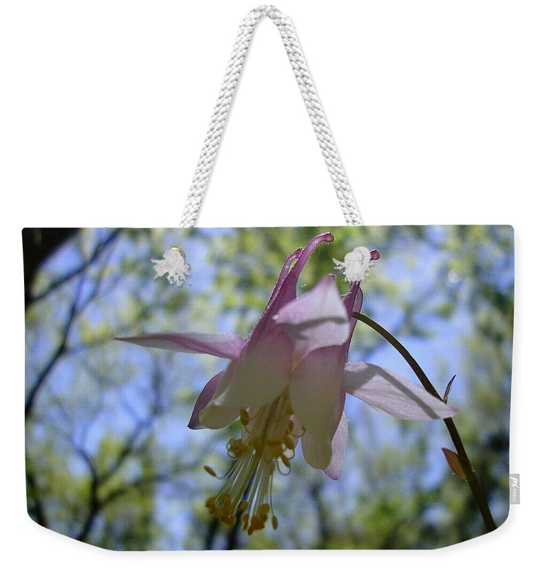 Flower Weekender Tote Bag featuring the photograph Dancing In The Light by Annie Adkins