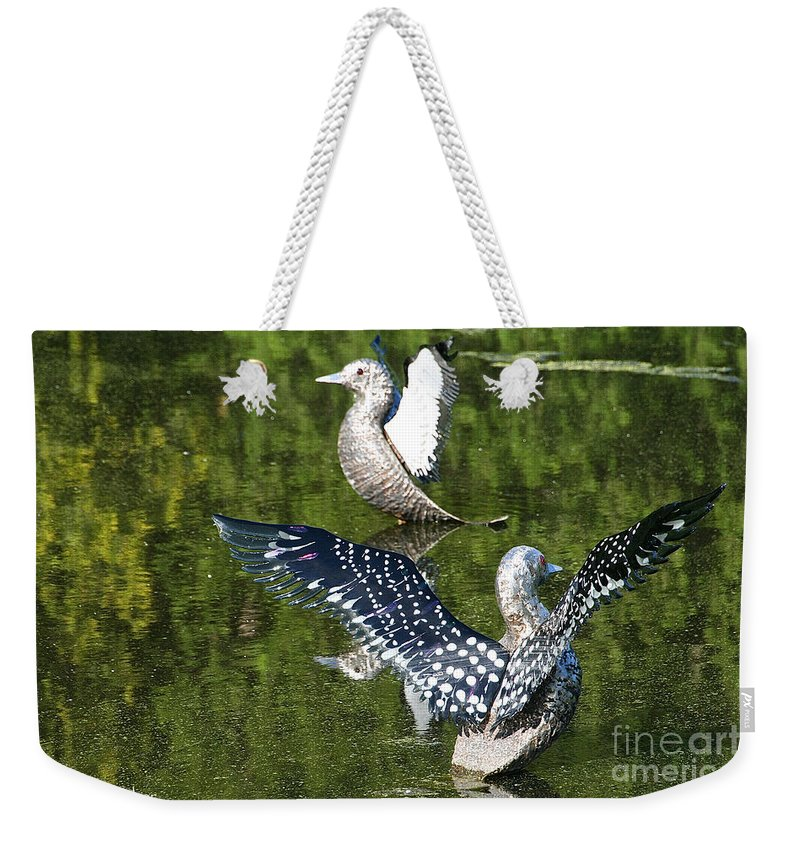 Outdoors Weekender Tote Bag featuring the photograph Dancing Loons by Susan Herber