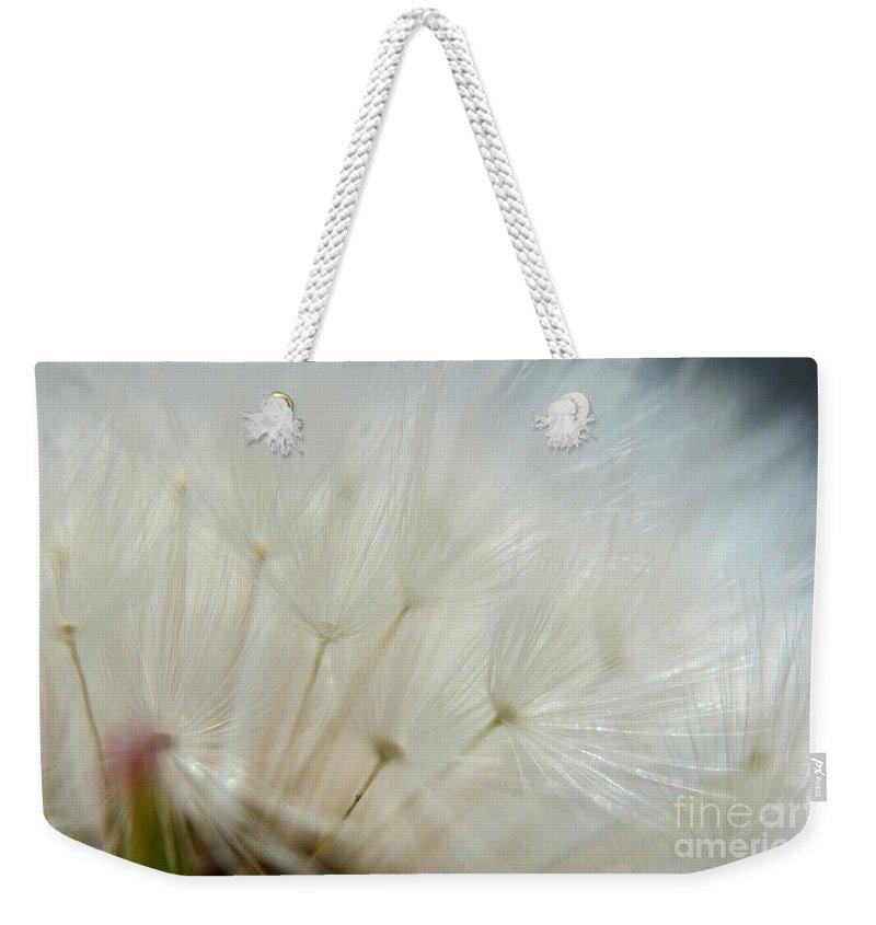 Nature Weekender Tote Bag featuring the photograph Dandelion Seed Head Macro II by Debbie Portwood