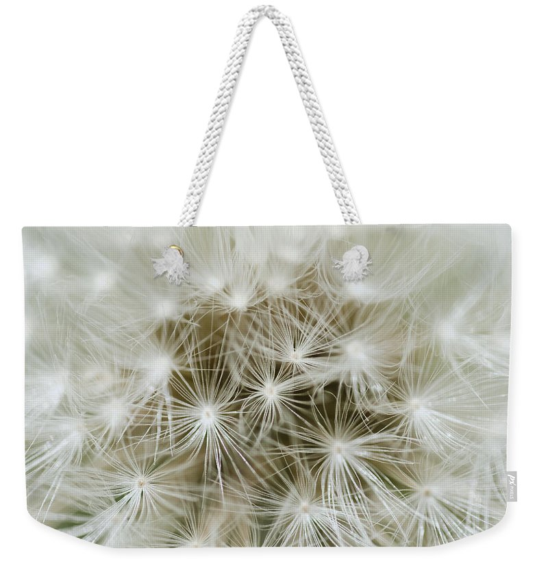 Abstract Weekender Tote Bag featuring the photograph Dandelion Texture by TouTouke A Y