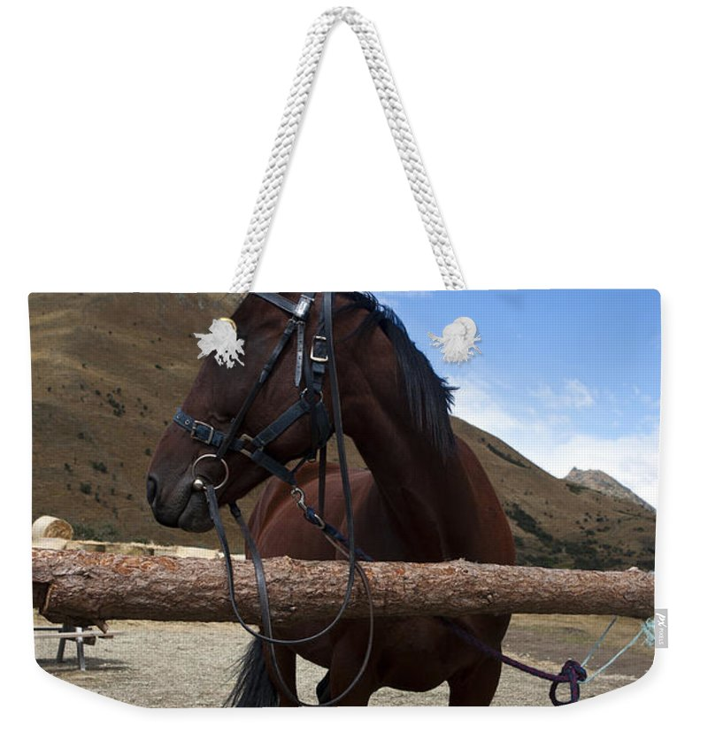 Queenstown Weekender Tote Bag featuring the photograph Dark Hose Ben Lomond Station New Zealand by Jason O Watson