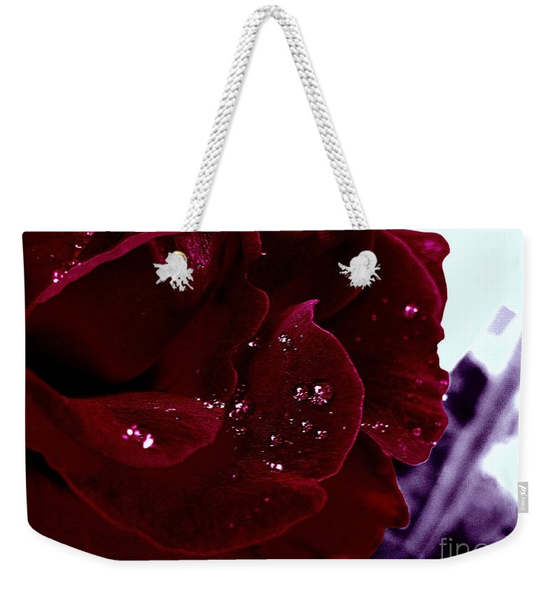 Rose Weekender Tote Bag featuring the photograph Dark Red Rose by Nina Ficur Feenan