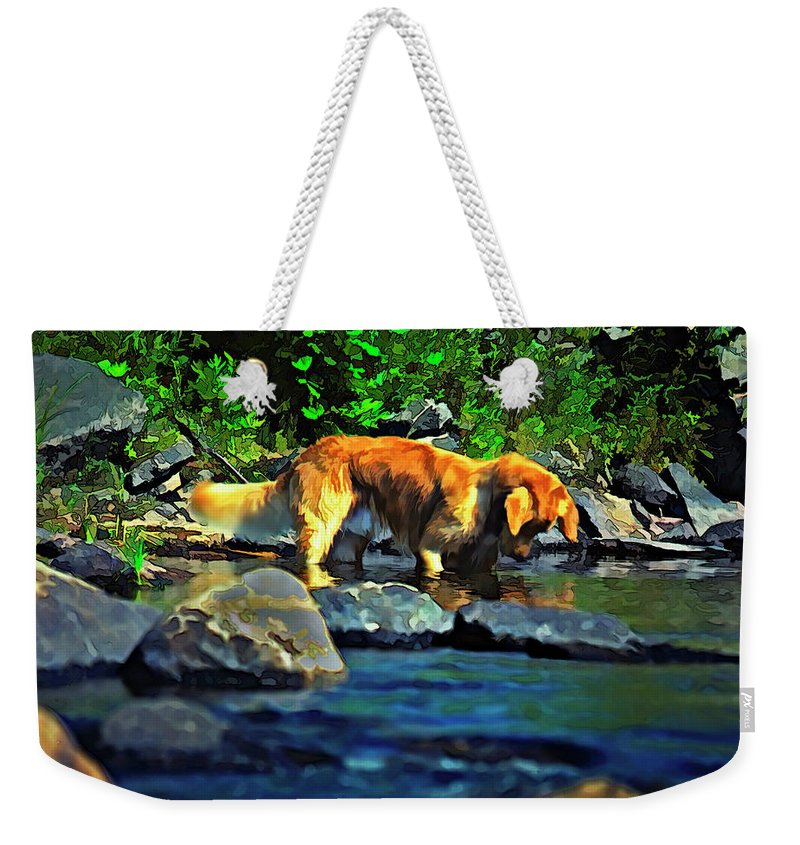 Dog Weekender Tote Bag featuring the photograph Darn Fishies by Steve Harrington