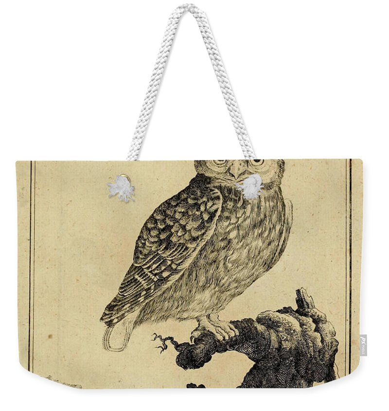 Owl Weekender Tote Bag featuring the drawing Das Kautzgen by Philip Ralley
