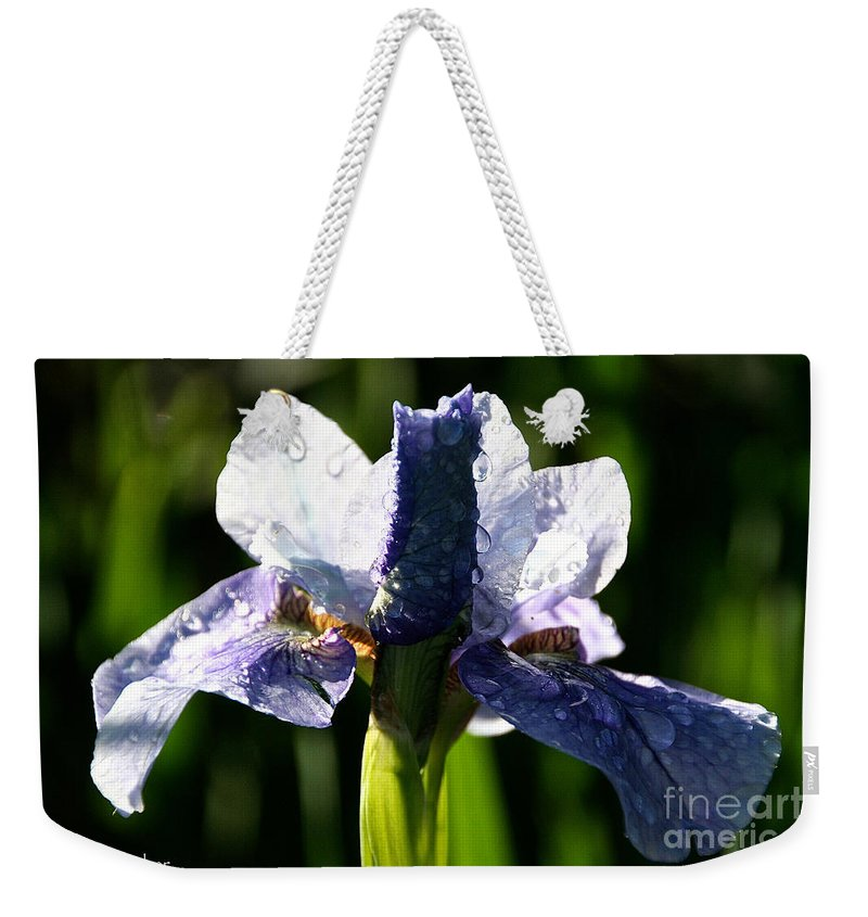Flower Weekender Tote Bag featuring the photograph Dawn's Early Light by Susan Herber