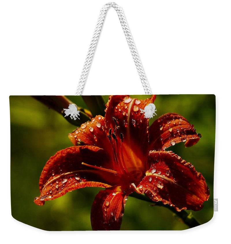 Daylily Weekender Tote Bag featuring the photograph Daylily by Ingrid Smith-Johnsen