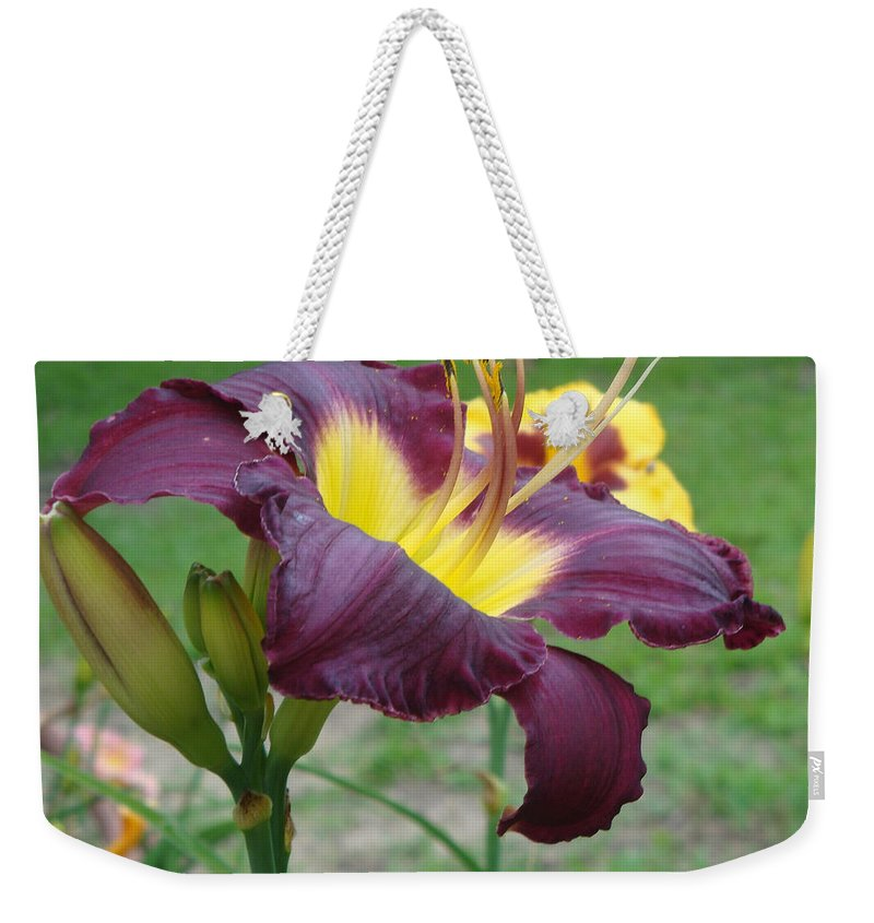 Daylily Weekender Tote Bag featuring the photograph Daylily Study I by Jean Blackmer