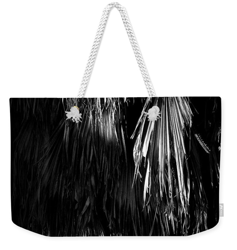 Black Weekender Tote Bag featuring the photograph Dead Fronds by Phil Penne
