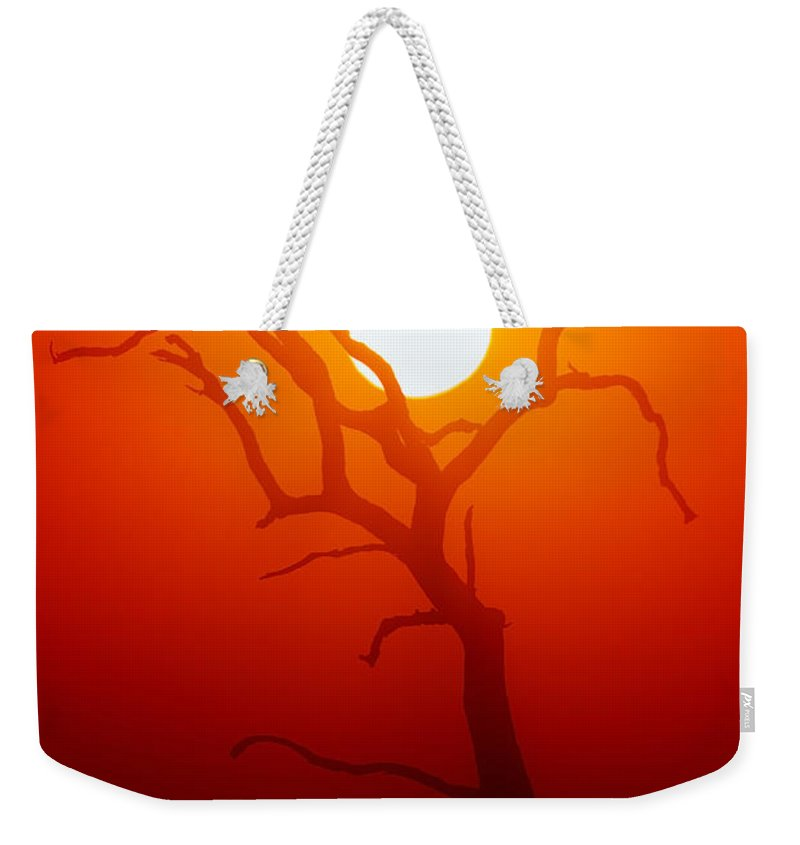 Tree Weekender Tote Bag featuring the photograph Dead Tree Silhouette And Glowing Sun by Johan Swanepoel