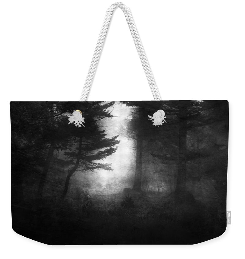 Rabbit Weekender Tote Bag featuring the photograph Deep In The Dark Woods by Theresa Tahara