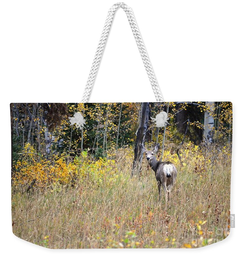 Deer Weekender Tote Bag featuring the photograph Deer Camoflauged by Deanna Cagle