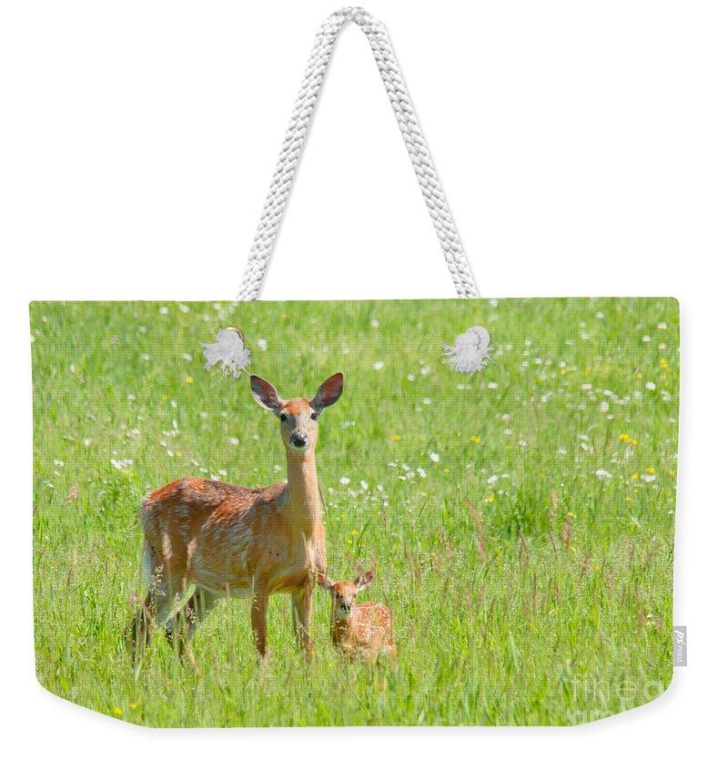 Deer Weekender Tote Bag featuring the photograph Deer Me by Cheryl Baxter