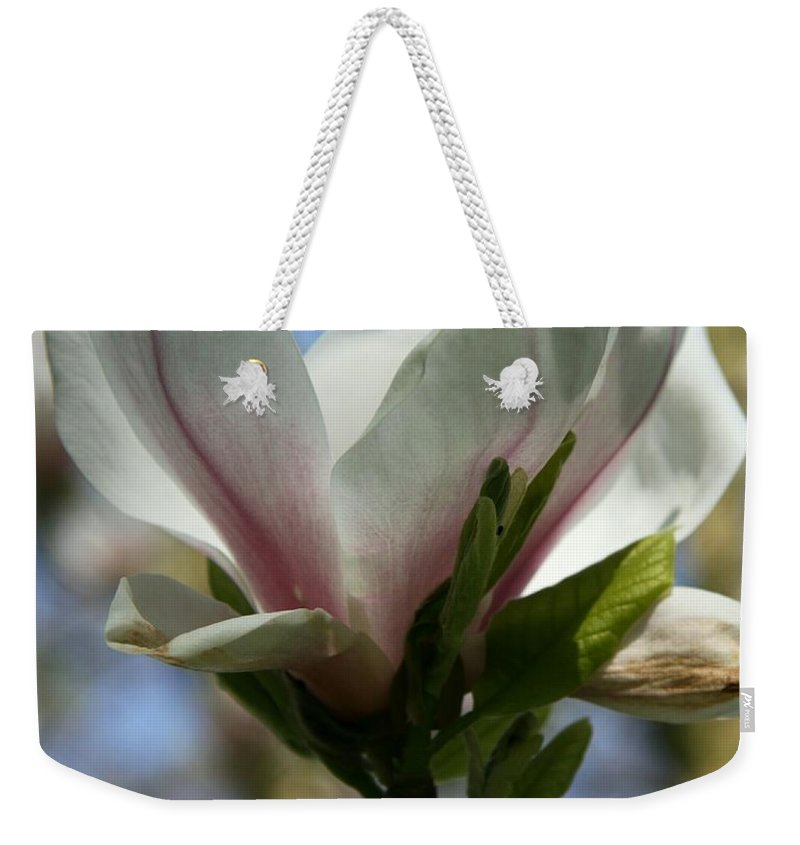 Magnolia Weekender Tote Bag featuring the photograph Delicate Bloom by Christiane Schulze Art And Photography