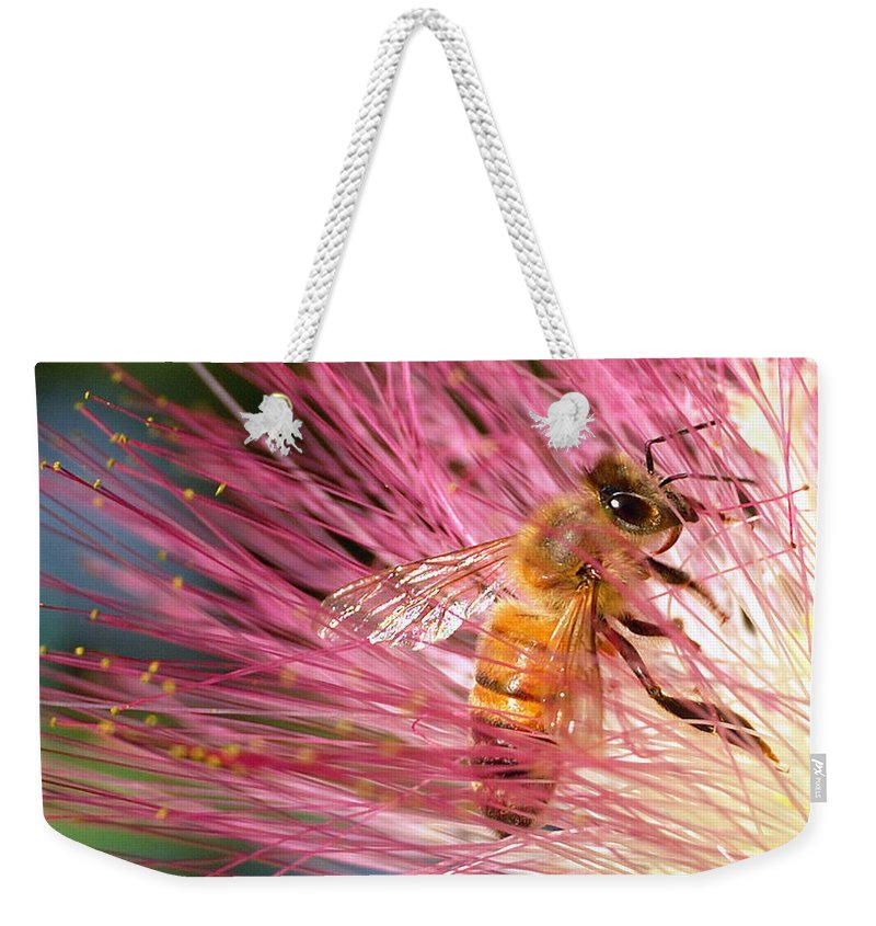 Honeybees Weekender Tote Bag featuring the photograph Delicate Embrace - Bee And Mimosa by Steven Milner