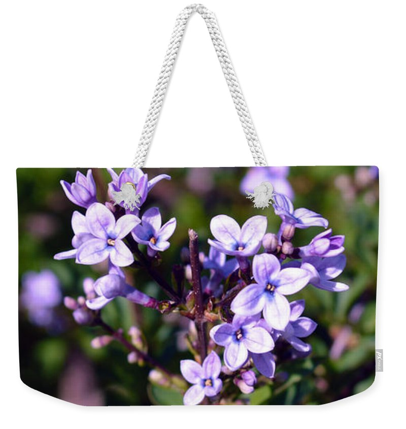 Weekender Tote Bag featuring the photograph Delicate Flowers by Brent Dolliver