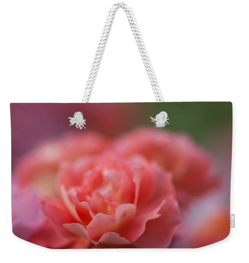 Rose Weekender Tote Bag featuring the photograph Delicate Layers Of Light by Mike Reid