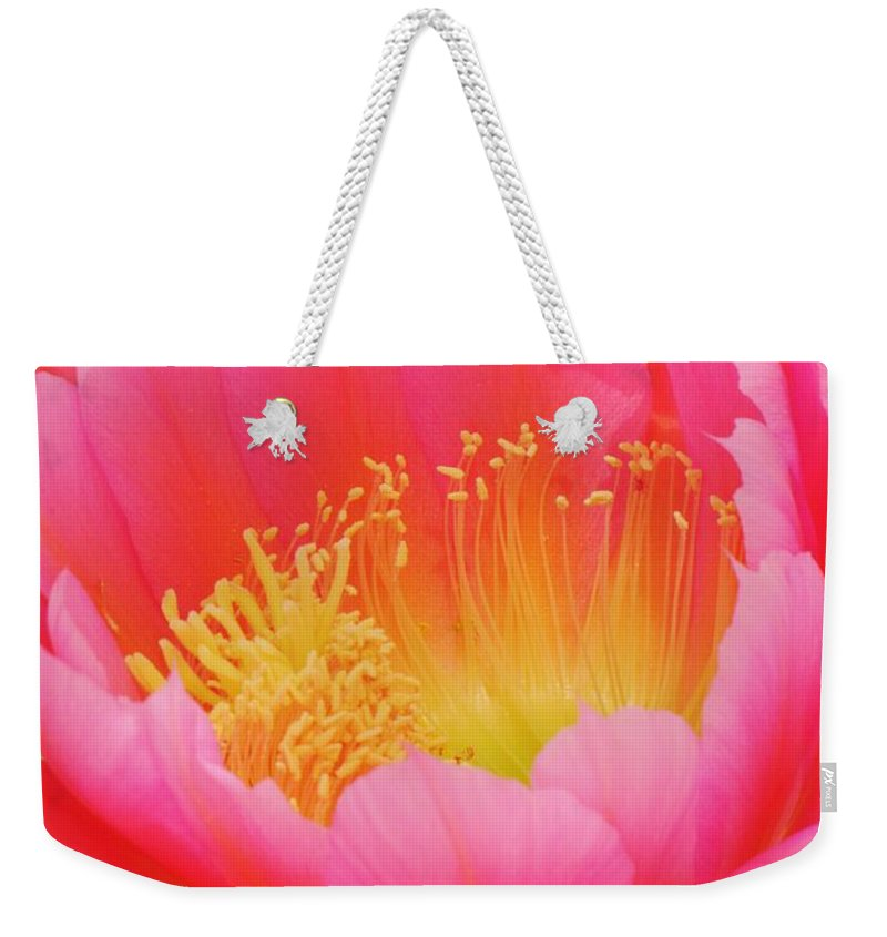 Cactus Flower Weekender Tote Bag featuring the photograph Delicate Pink Cactus Flower by Michelle Cassella