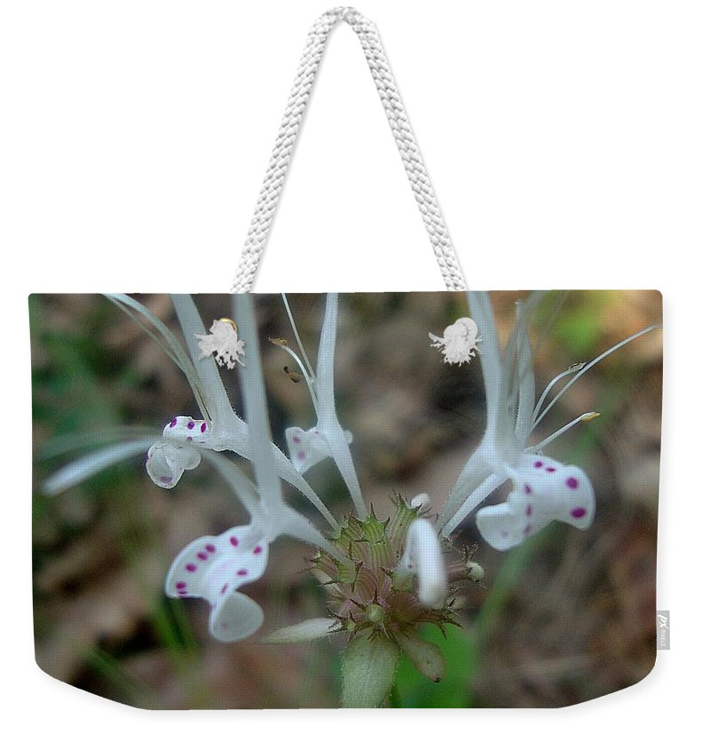 Wildflower Weekender Tote Bag featuring the photograph Delicate Wildflower by Annie Adkins