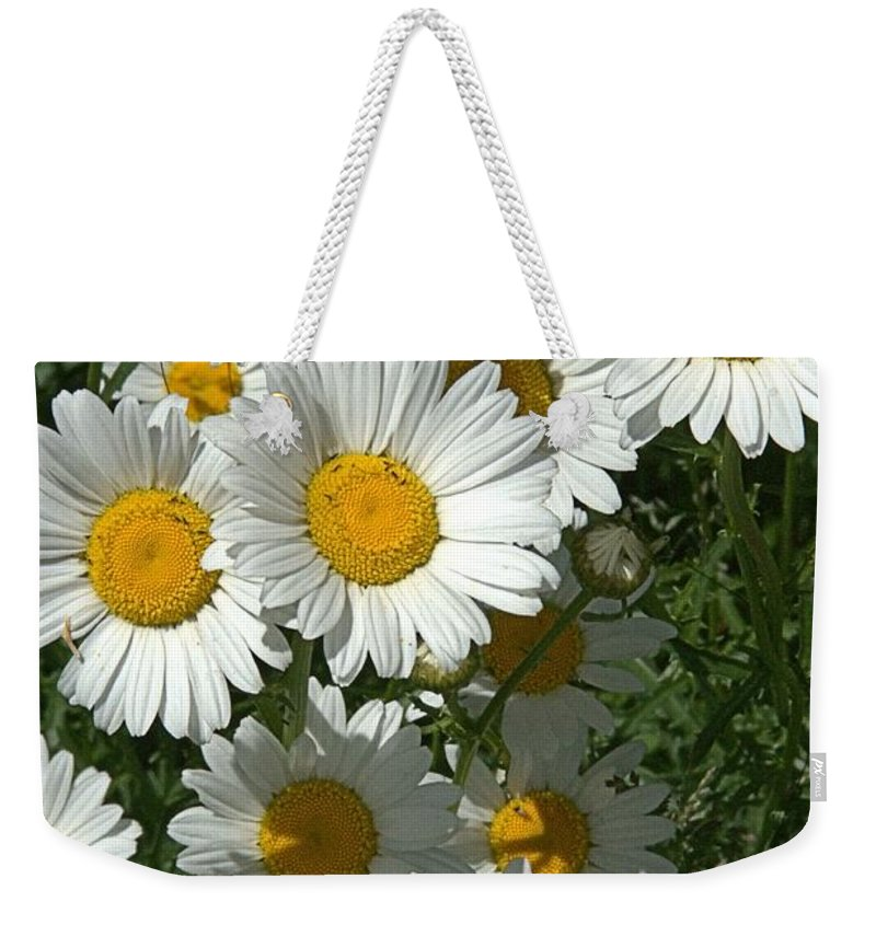 Daisy Weekender Tote Bag featuring the photograph Delightful Daisies by Valerie Kirkwood