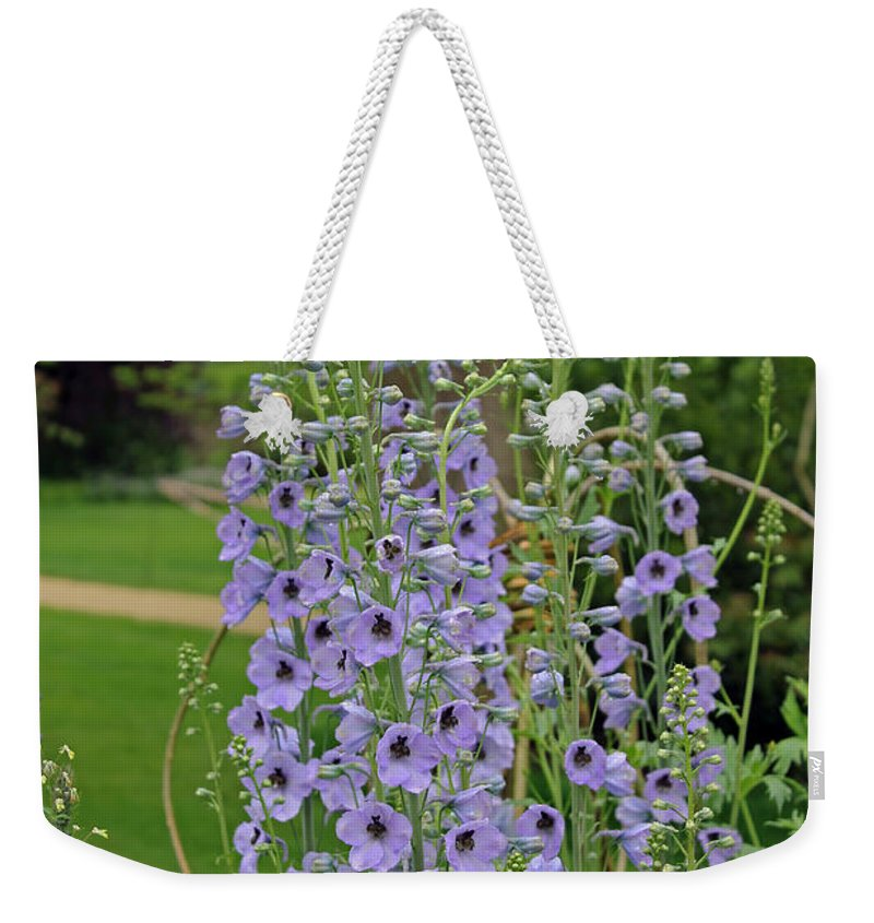 Flora Weekender Tote Bag featuring the photograph Delphiniums by Tony Murtagh