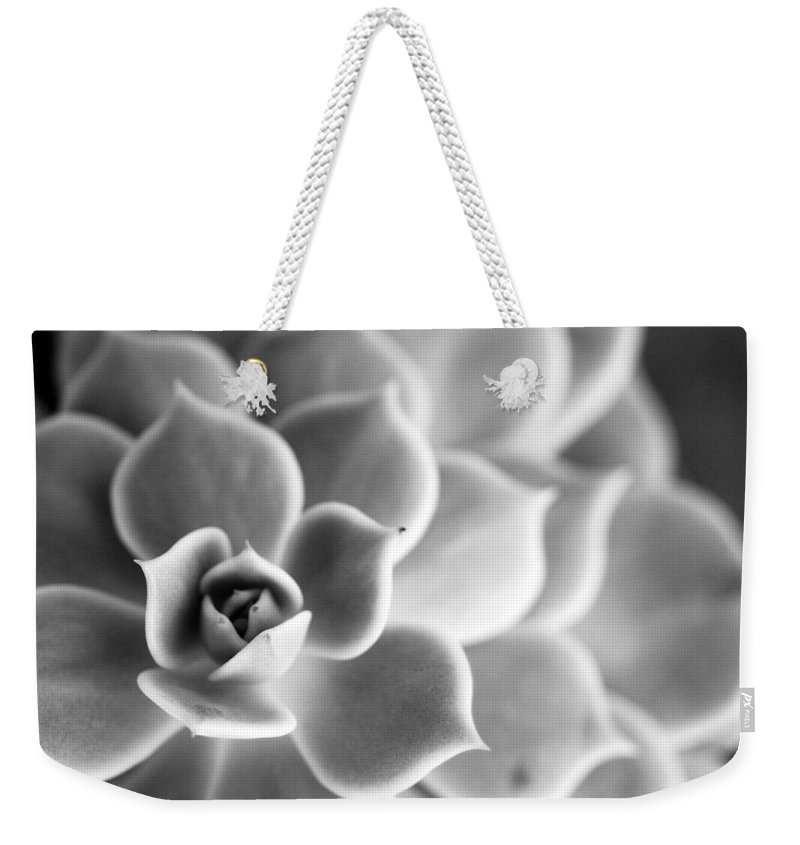 Succulent Weekender Tote Bag featuring the photograph Desert Center by Nancy Ingersoll