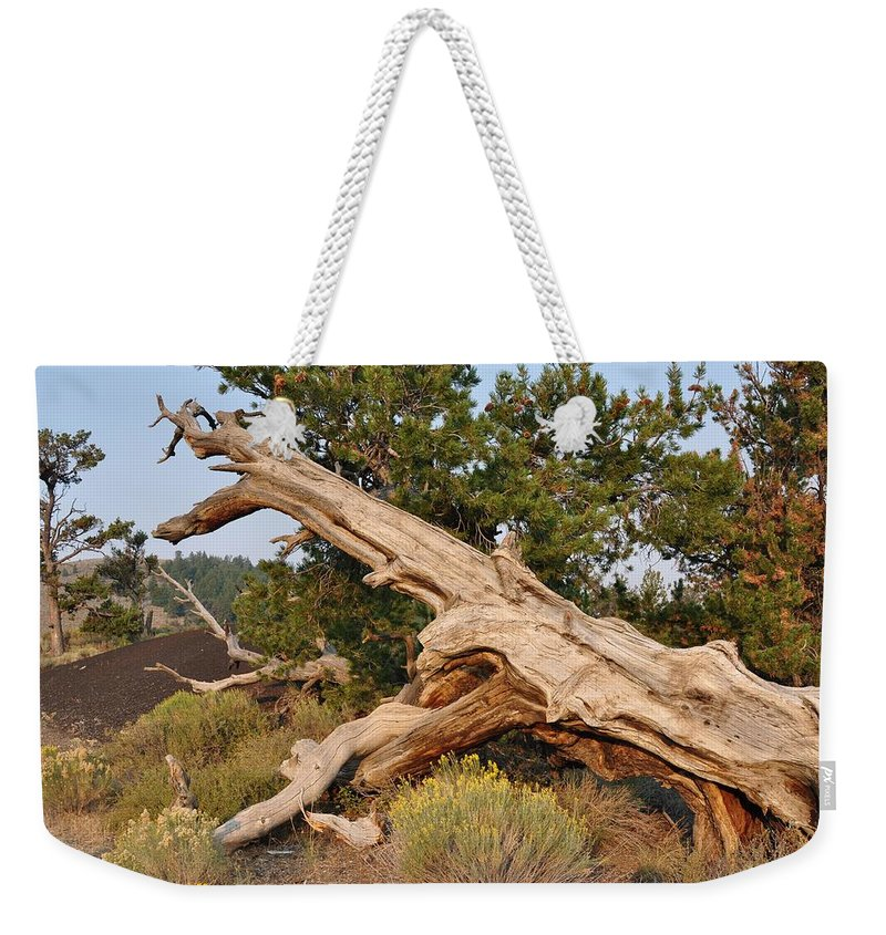 Idaho Weekender Tote Bag featuring the photograph Desert Creation by Image Takers Photography LLC - Laura Morgan