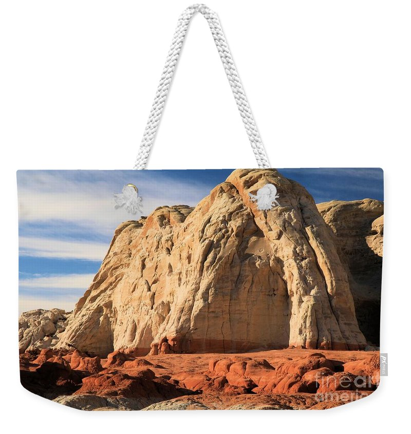 Toad Stools Weekender Tote Bag featuring the photograph Desert Elephant by Adam Jewell