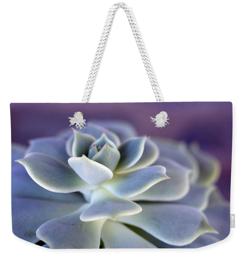 Succulent Weekender Tote Bag featuring the photograph Desert Glow by Nancy Ingersoll
