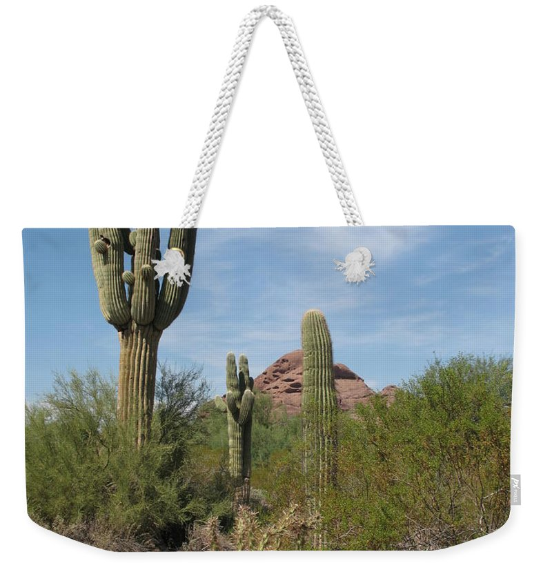 Saguaro Weekender Tote Bag featuring the photograph Desert Landscape With Saguaro by Christiane Schulze Art And Photography
