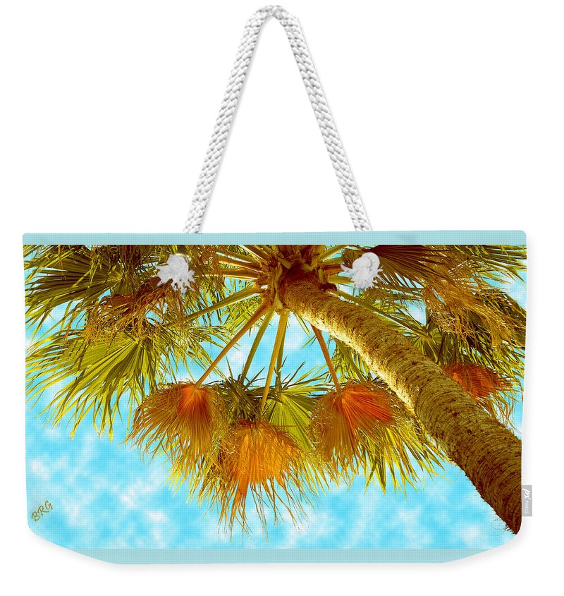 Palm Weekender Tote Bag featuring the photograph Desert Palm by Ben and Raisa Gertsberg